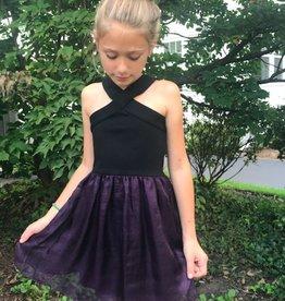 SALLY MILLER CHICAGO DRESS
