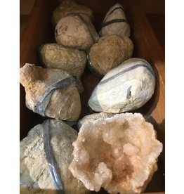 "Squire Boone Village Cracked Open Geodes, Fossil Cystoid Geodes, 1 1/2"" to 2 1/2"" on longest side"