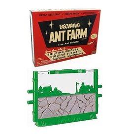 Uncle Milton Uncle Milton Retro Ant Farm