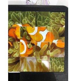 Family Games America Deep Blue Sea Sliding Tile Puzzle - Clownfish