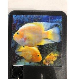 Family Games America Deep Blue Sea Sliding Tile Puzzle - Parrotfish