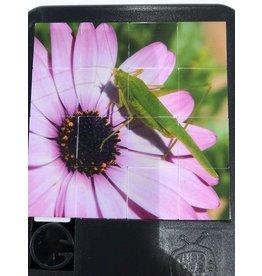 Turn Off the TV Sliding Tile Puzzels Buds & Bugs grasshopper