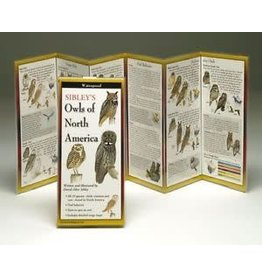 Steven M Lewers and Associates Folding Guides Owls of North America