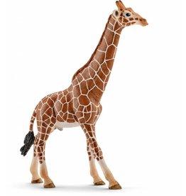 Schleich Schleich Male Giraffe