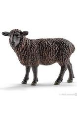 Schleich Black Sheep