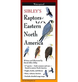 Steven M Lewers and Associates Raptors of Eastern North America Folding Guide