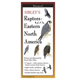Steven M Lewers and Associates Sibley's waterproof Raptors Eastern North America