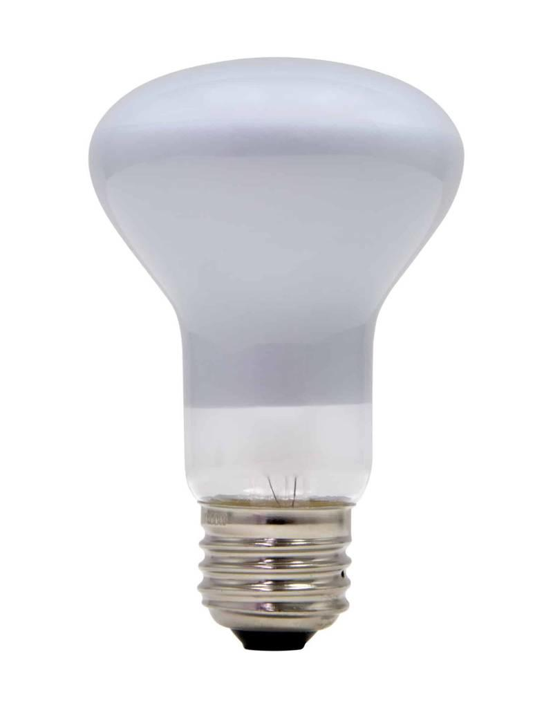 Schylling Toys 100W Light Bulb