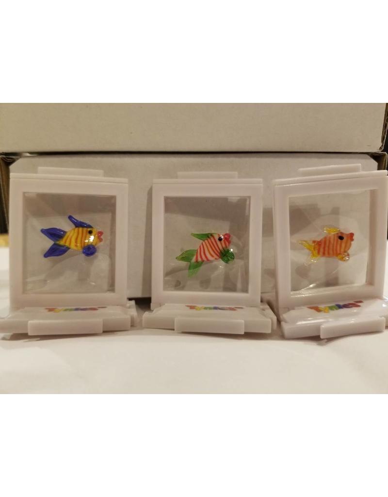 Tynies Tynies- Fish (Colors Vary)