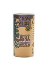 Channel Craft Grow Kit - Dazzling Blue Spruce