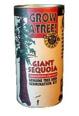 Channel Craft Grow Kit - Giant Sequoia