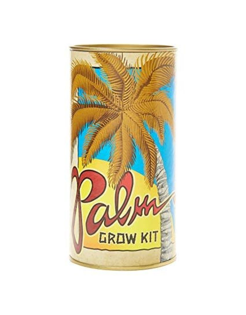 Channel Craft Grow Kit - Sabal Palm Tree