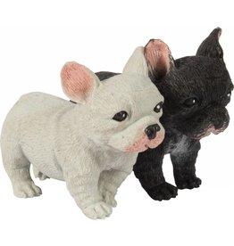 Schylling Toys Pocket Pup
