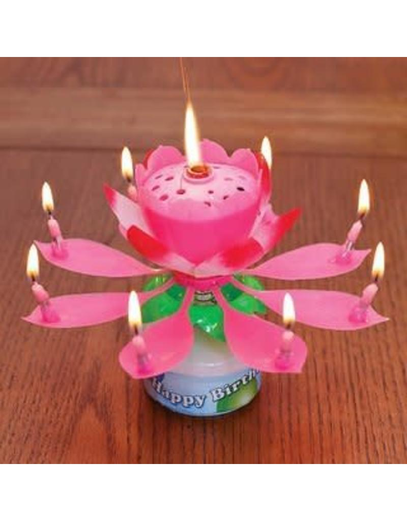 Happybirthdaycandle Pink Flower Birthday Candle Party Add On