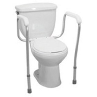 Dalton Medical Dalton Toilet Safety Frame/Rail