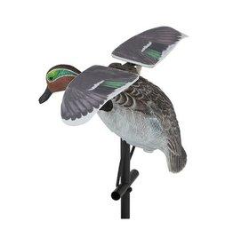 Lucky Duck LUCKY FLAPPER TEAL HD