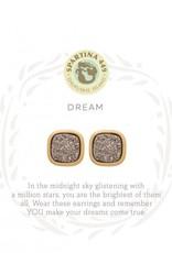 Spartina 449 512480 SEA LA VIE STUD EARRINGS DREAM/PLATINUM DRUZY