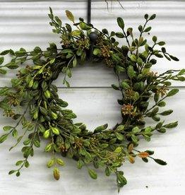 Small English Boxwood wreath candlering