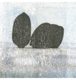 Hallow Ground Distant Animals: Lines LP