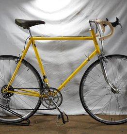 Witt Custom Road Bike
