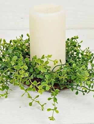 Sprouting Grass Candle Ring