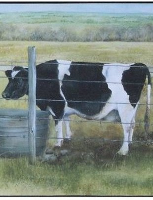 Cow in Field Box Print