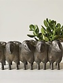 Flock of Sheep Planter