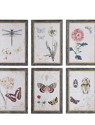 Botanical Print (6 Styles)