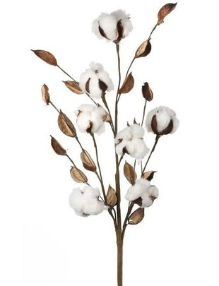 Cotton Spray w/ Pods