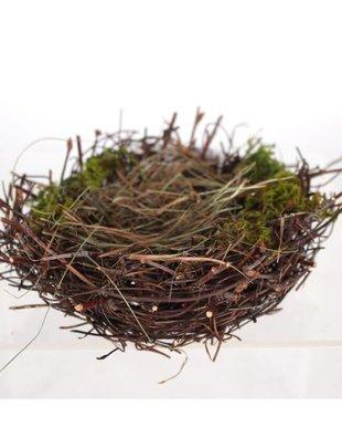 """6"""" Twig Nest w/ Lichen"""