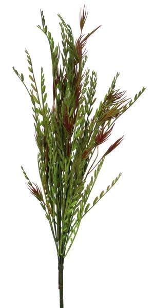 Iva Axillaris & Wild Oats Bush - The Last Straw