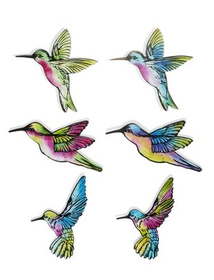 Hummingbird Screen Saver (6 Styles)