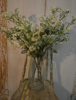 White Flowering Miller Spray