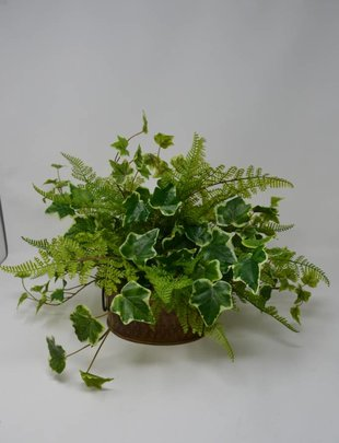 Custom Fern and Ivy Arrangement
