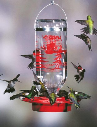 32oz Glass Bottle Hummingbird Feeder