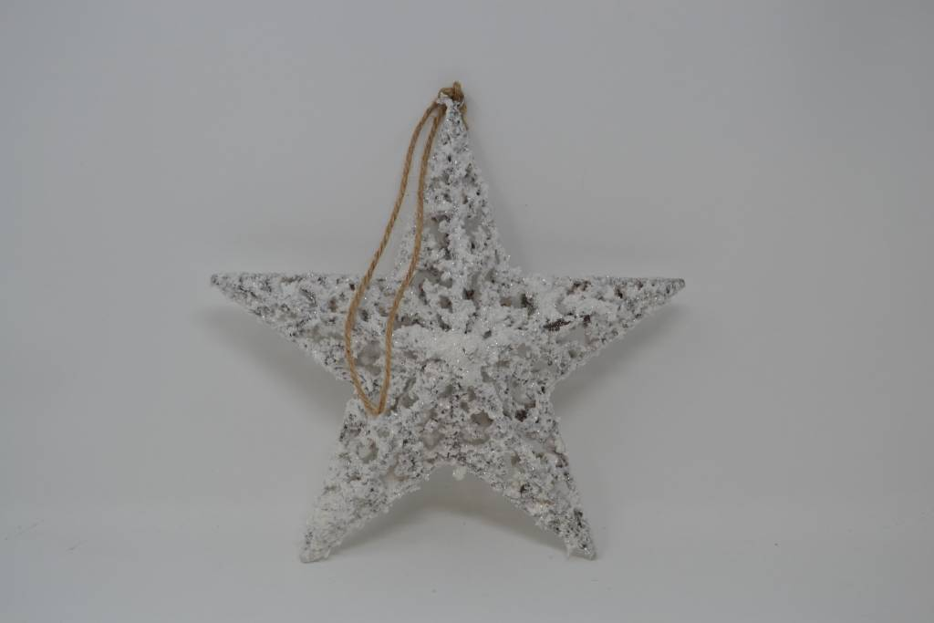 "12"" Snowed 3-D Star Ornament"