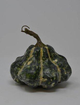 Green Striped Gourd