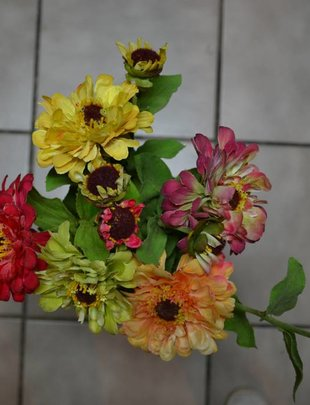 Zinnia Spray (5 Colors)
