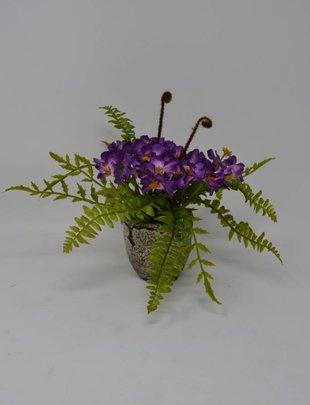 Mini Phlox with Fern Custom Arrangement