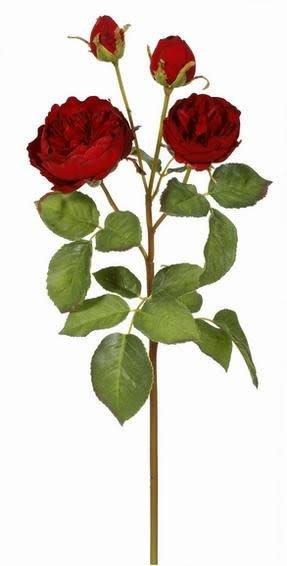 English Rose Spray (5 Colors)