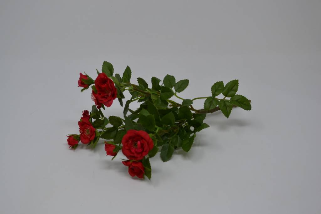Mini Rose Bush (3 Colors)