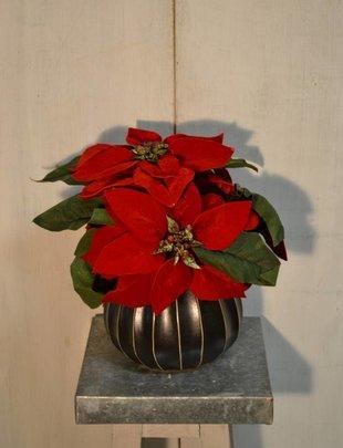 Red Velvet Poinsettia Pick
