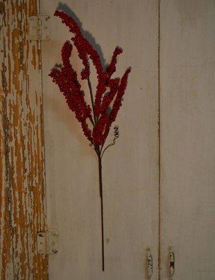 Red Waterproof Mountain Berry Spray