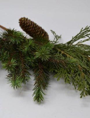 Pine & Cedar Cone Spray