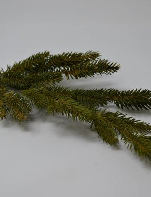 Black Spruce Spray