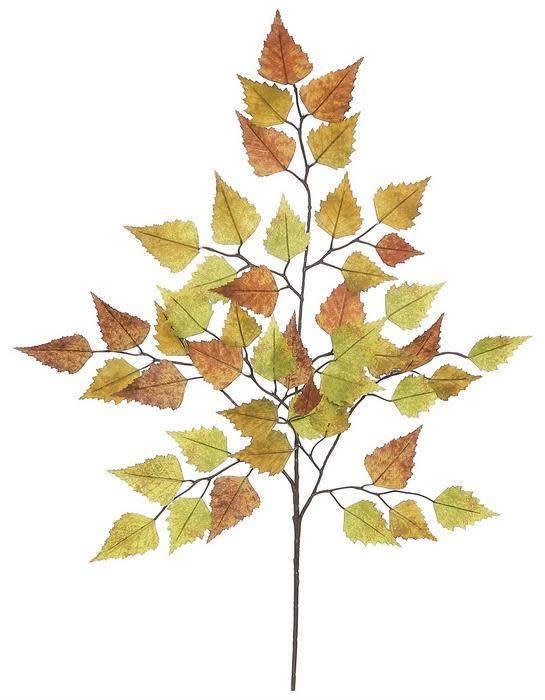 Birch Leaf Spray