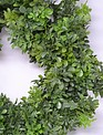 "24"" Boxwood Wreath"