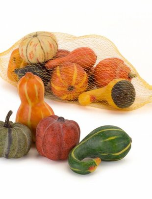 Bag of Mini Gourds