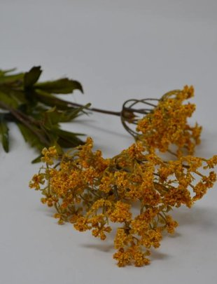 Gold Queen Anne's Lace Spray