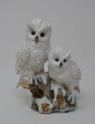 Perched Snowy Owl Pair